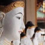 【初期仏教の性格判断基準】ブッダが示した苦しみを超える法